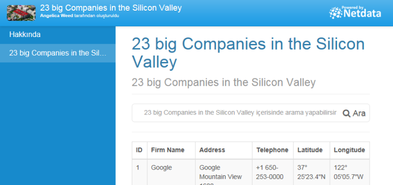 23 big Companies in the Silicon Valley