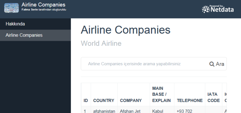Airline Companies