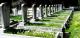 Mezarlık Bilgi Sistemi